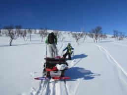 Joel and Odin breaking trail